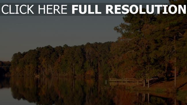 hd hintergrundbilder wald bäume herbst reflexion see