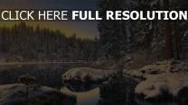 winter tanne wald schnee see wasser reflexion