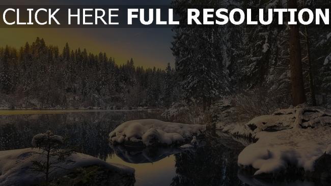 hd hintergrundbilder winter tanne wald schnee see wasser reflexion