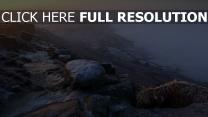 steine winter frost nebel felsen hoch