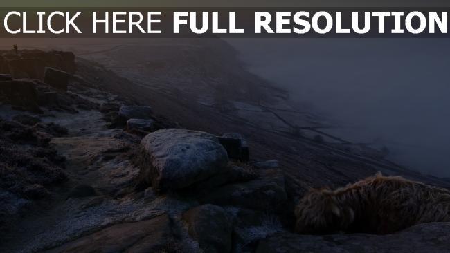 hd hintergrundbilder steine winter frost nebel felsen hoch