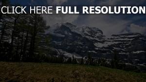bäume gras ebenen berge schnee himmel wolken