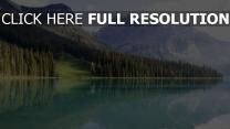 see tannenwald berge wasser reflexion himmel