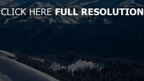 fichtenwald schnee winter berggipfel