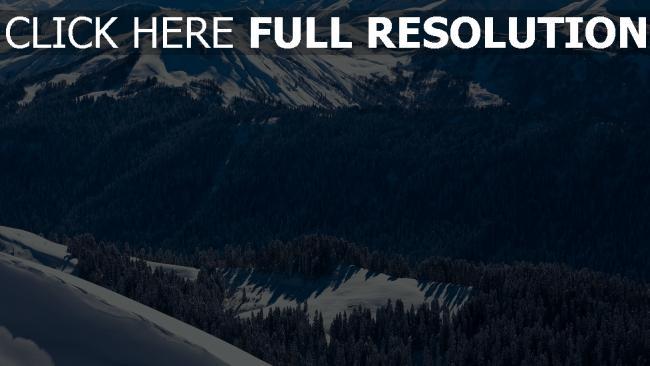 hd hintergrundbilder fichtenwald schnee winter berggipfel
