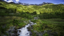 wald fluss fließende haus gebirge norwegen