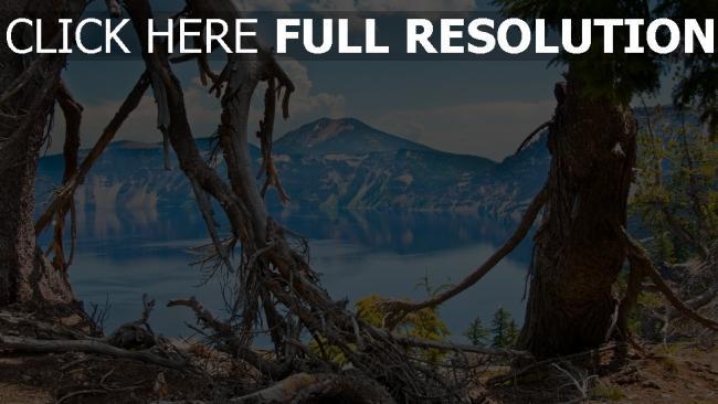 hd hintergrundbilder bäume äste wurzeln see berg tal