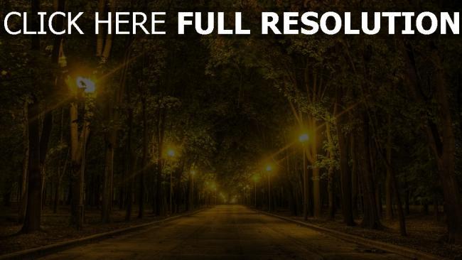 hd hintergrundbilder bäume park gasse straße nacht
