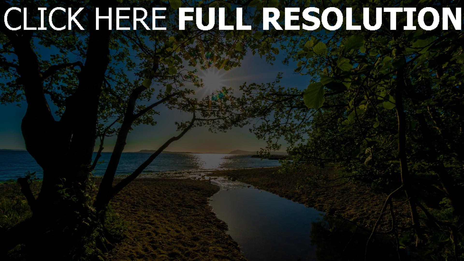 hd hintergrundbilder bäume blätter strahlen sonne sommer meer strand 1920x1080
