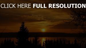 sonnenuntergang sonne himmel see tannenwald