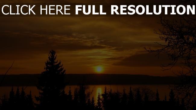 hd hintergrundbilder sonnenuntergang sonne himmel see tannenwald