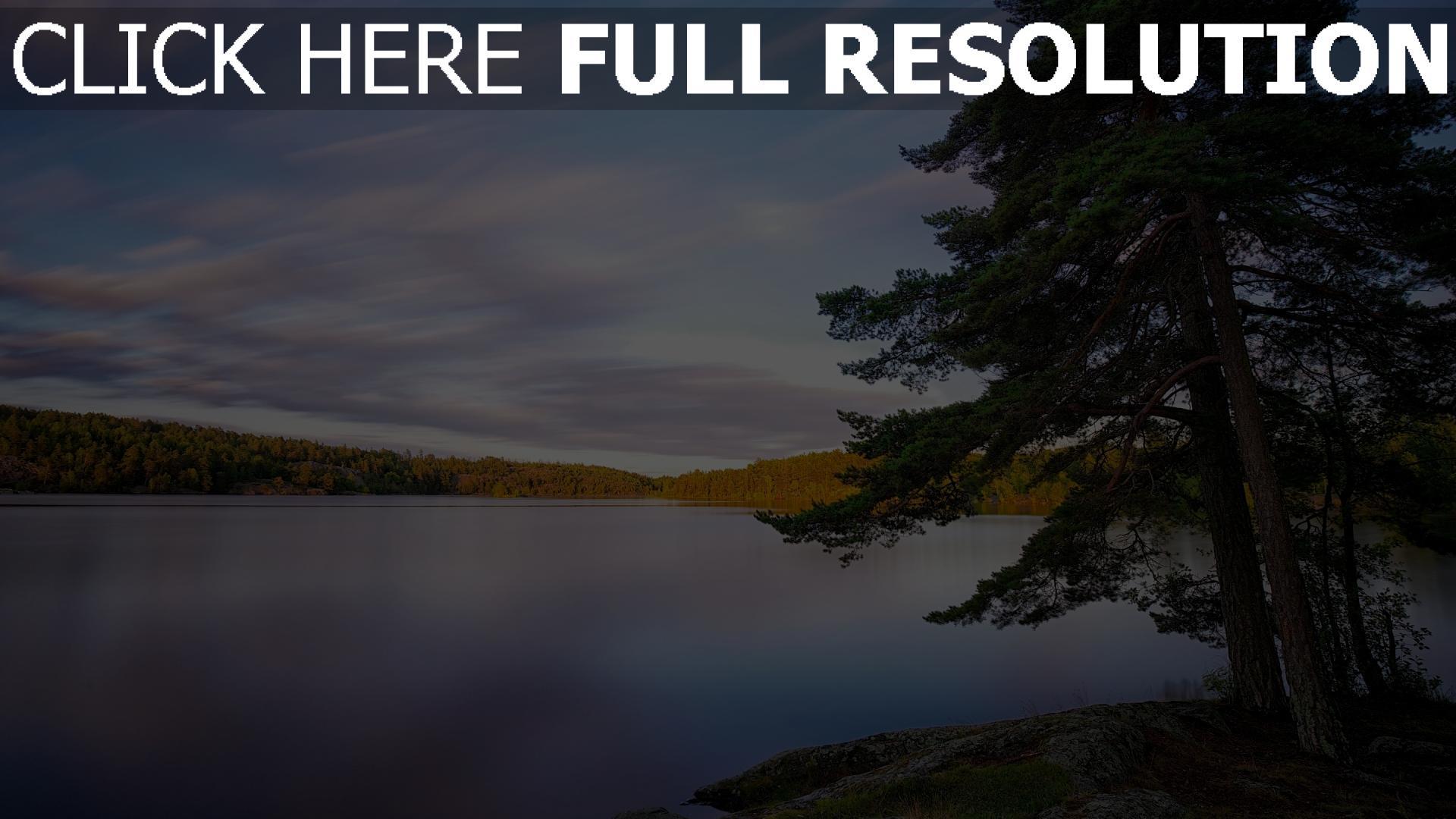 hd hintergrundbilder see himmel strand wald baum tanne schweden 1920x1080