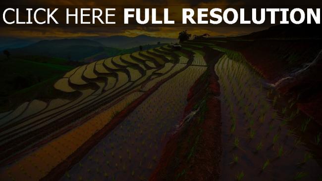 hd hintergrundbilder reisfelder berge himmel sonnenuntergang thailand