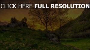 bäume hügel gras berge himmel hdr