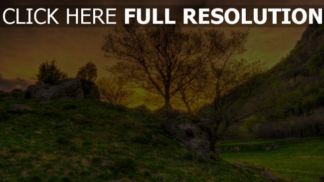 hd hintergrundbilder bäume hügel gras berge himmel hdr