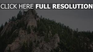 stein berg bäume spitze scheitelpunkt