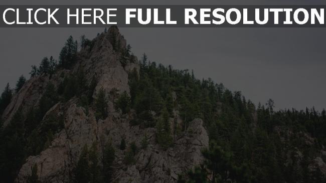 hd hintergrundbilder stein berg bäume spitze scheitelpunkt
