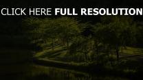 virginia park kräutern gras bäume bach