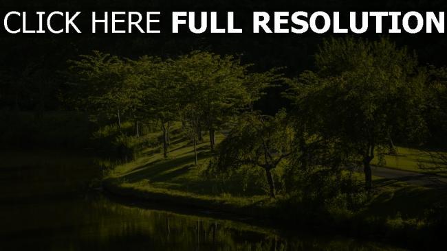 hd hintergrundbilder virginia park kräutern gras bäume bach