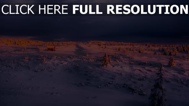 hd hintergrundbilder winter schnee himmel wolken tanne glühen