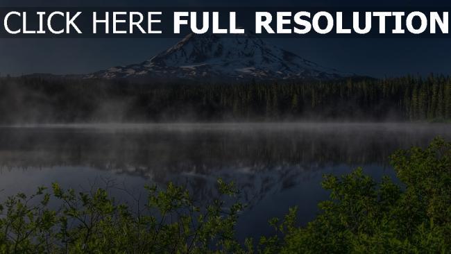 hd hintergrundbilder berg see nebel wald fichte