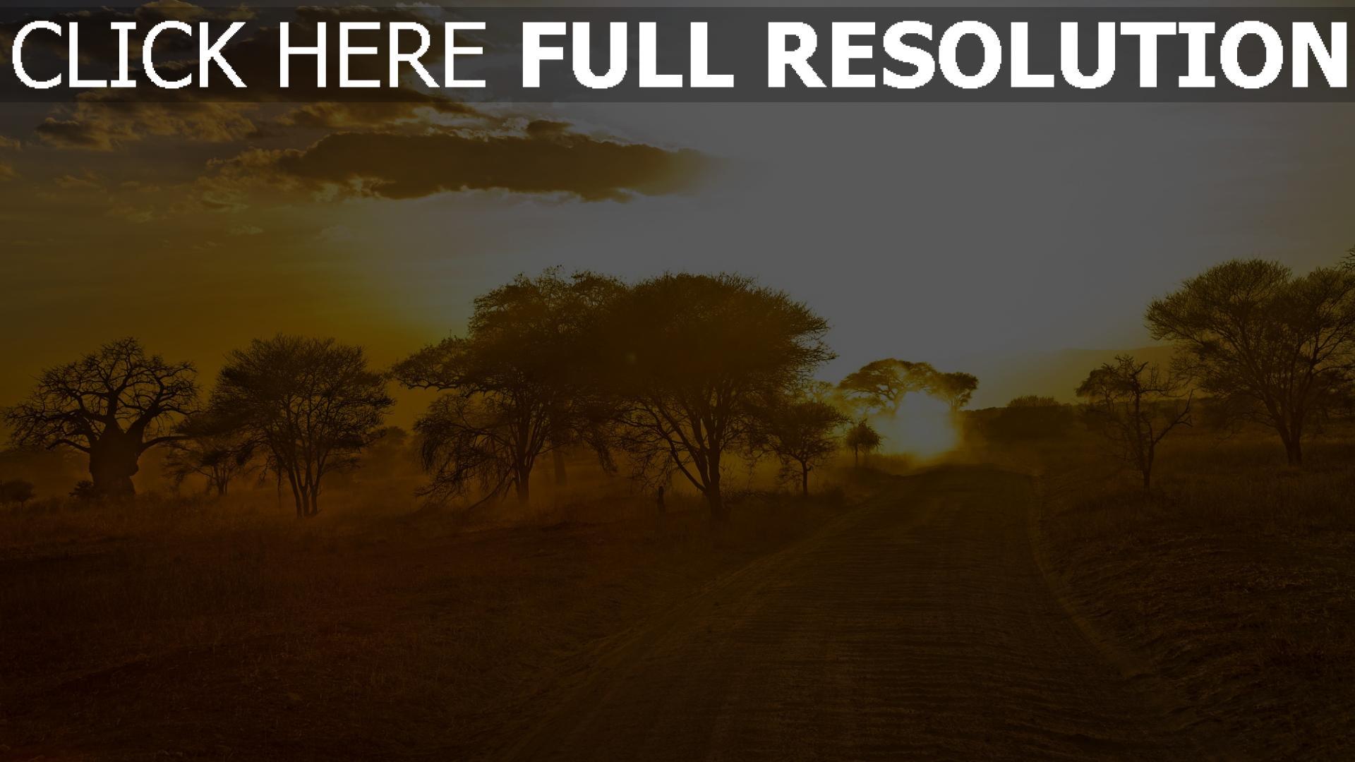 hd hintergrundbilder straße bäume sand afrika 1920x1080