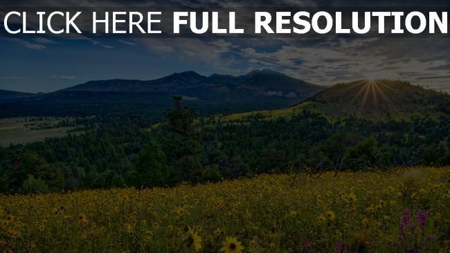 hd hintergrundbilder berge sonne strahlen blumen blühen wiese arizona