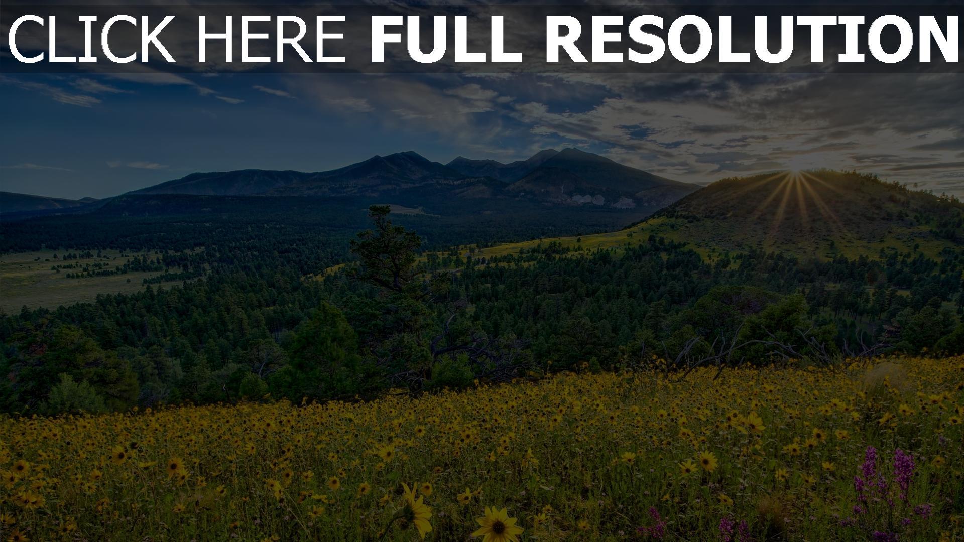 hd hintergrundbilder berge sonne strahlen blumen blühen wiese arizona 1920x1080