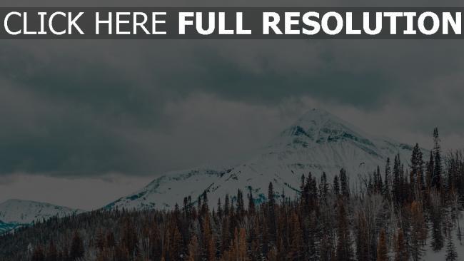 hd hintergrundbilder schneebedeckt bäume berge