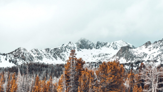 hd hintergrundbilder gipfel bäume schneebedeckt berge