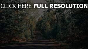 schatten bäume weg