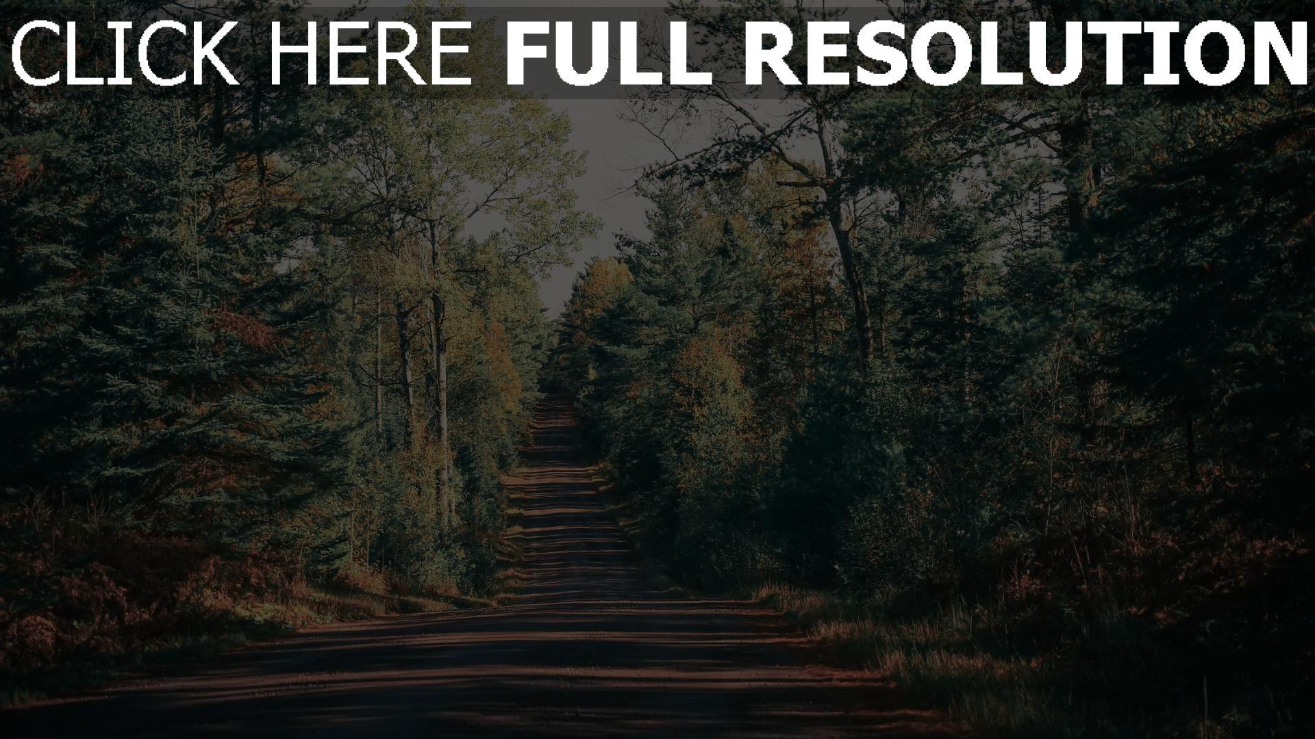 hd hintergrundbilder schatten bäume weg 1920x1080