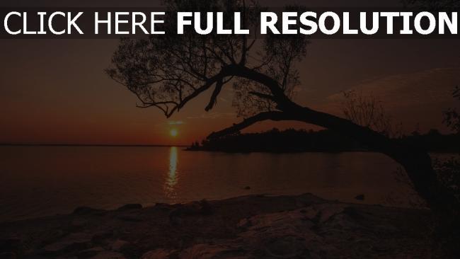 hd hintergrundbilder sonnenuntergang strand fluss baum