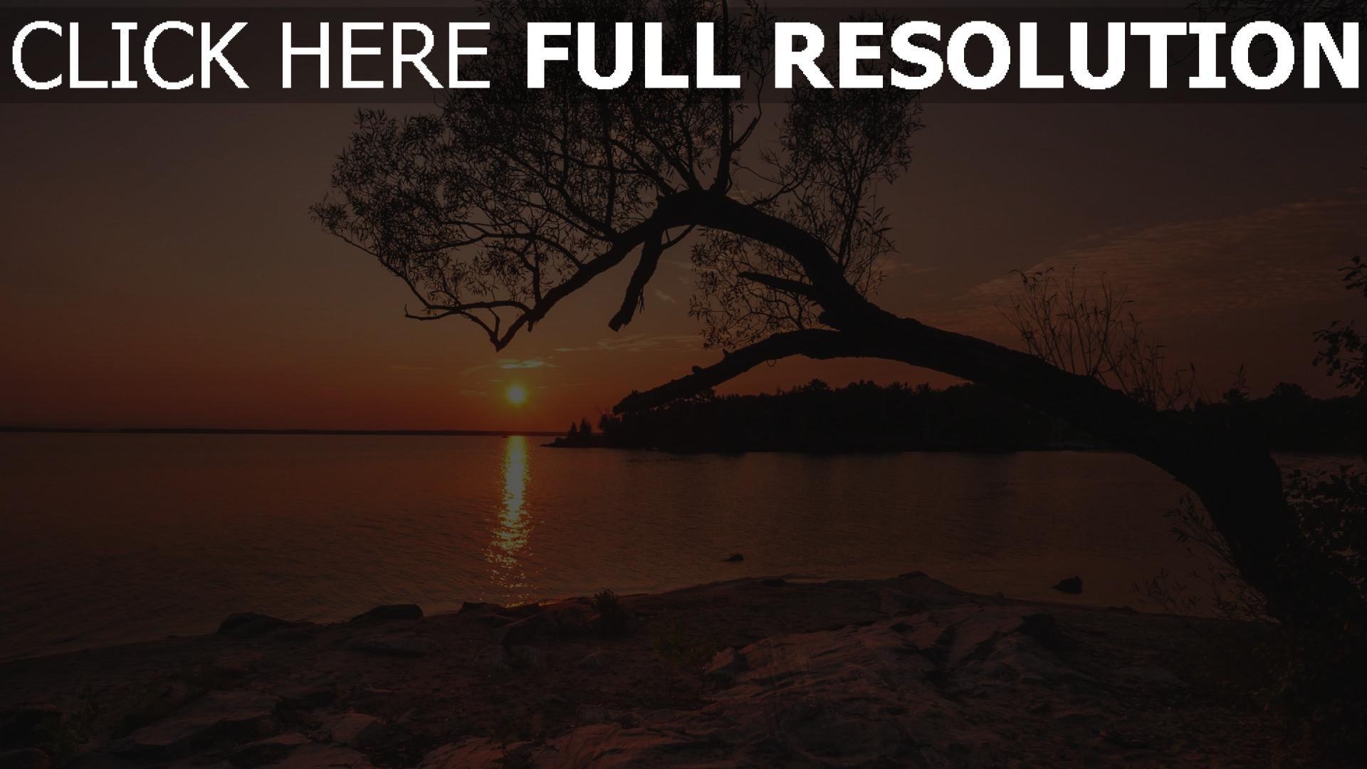 HD Hintergrundbilder sonnenuntergang strand fluss baum ...