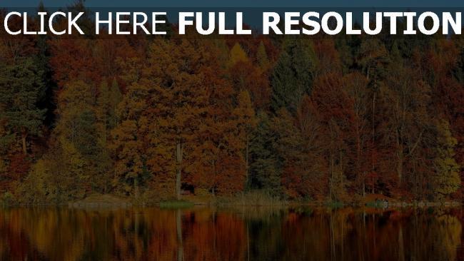 hd hintergrundbilder fluss reflexion bäume herbst