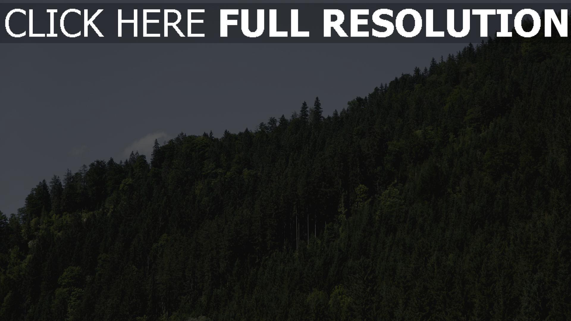hd hintergrundbilder bäume grün hügel himmel 1920x1080