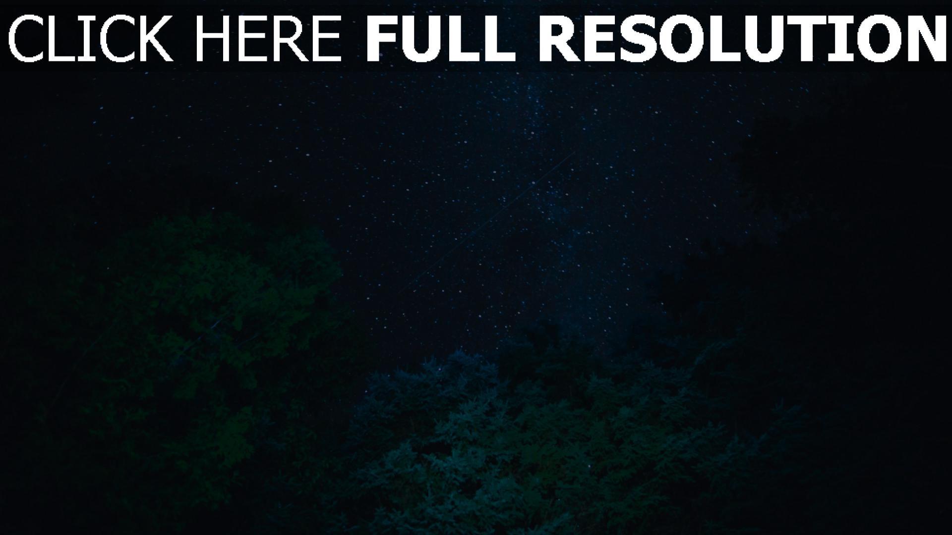 hd hintergrundbilder sternenhimmel sterne bäume nacht 1920x1080