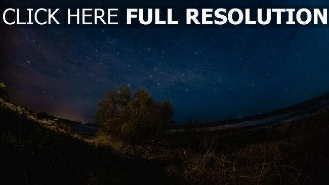 hd hintergrundbilder nacht baum sternenhimmel