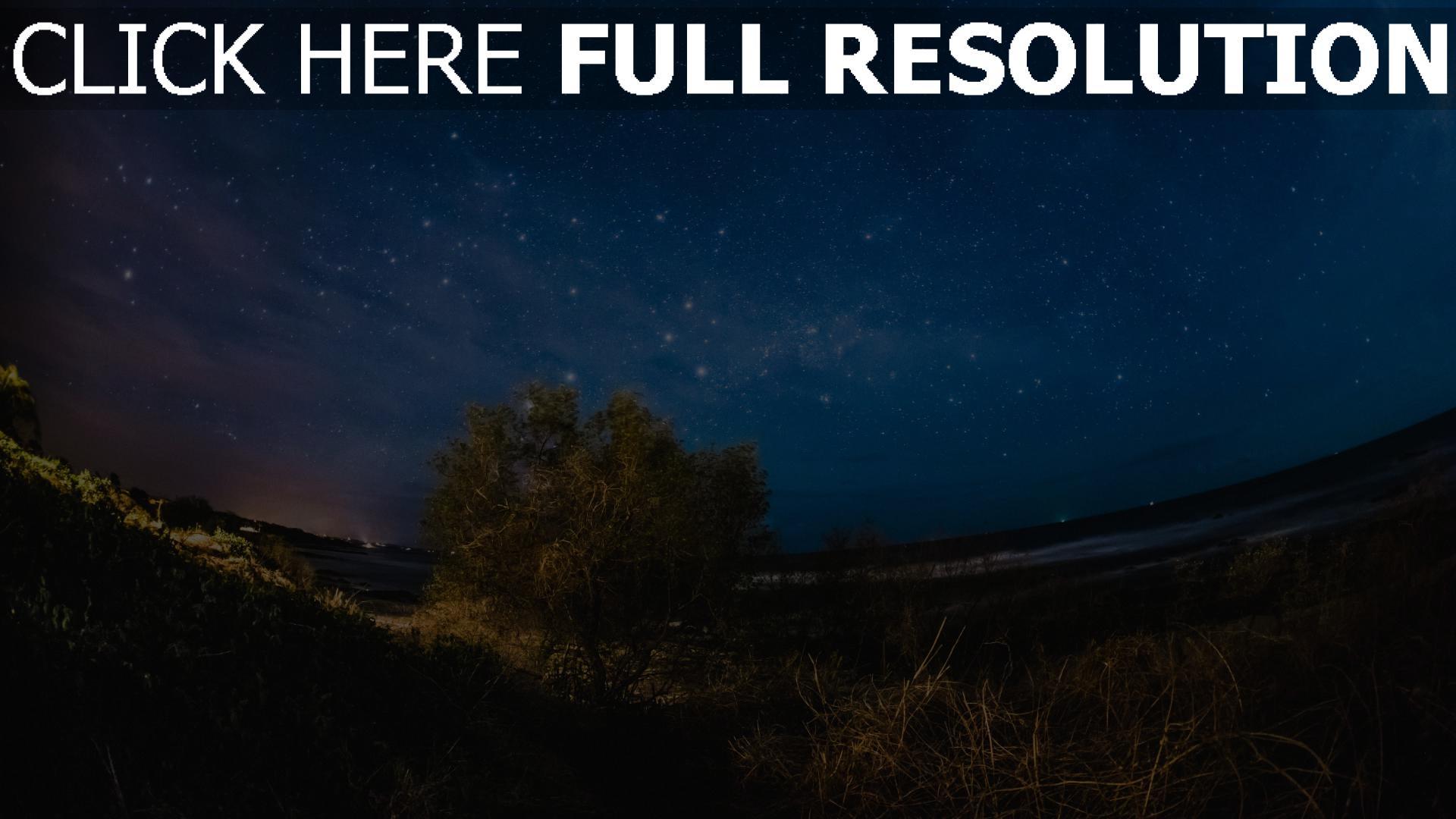 hd hintergrundbilder nacht baum sternenhimmel 1920x1080