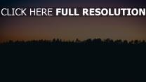 sonnenuntergang horizont bäume
