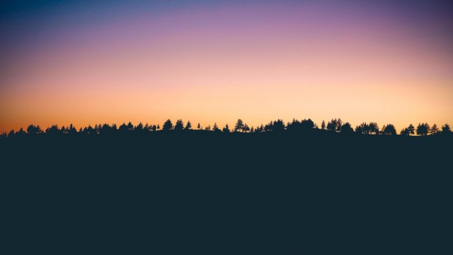 hd hintergrundbilder sonnenuntergang horizont bäume