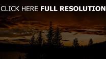 himmel sonnenuntergang bäume
