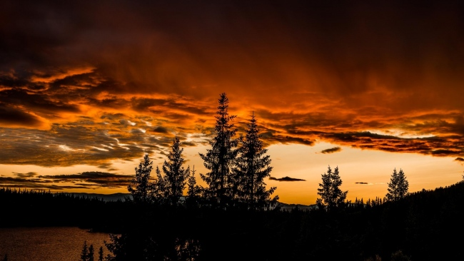 hd hintergrundbilder himmel sonnenuntergang bäume