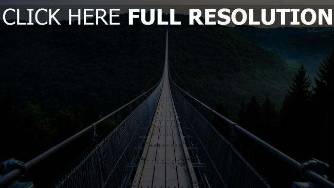hd hintergrundbilder hängebrücke bäume brücke
