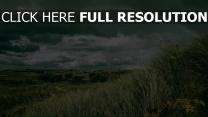 feld himmel regenbogen gras