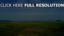 feld gras himmel sommer