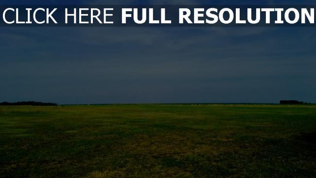 hd hintergrundbilder feld gras himmel sommer