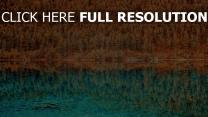 hdr see bäume reflexion