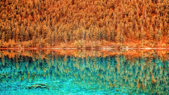 hd hintergrundbilder hdr see bäume reflexion