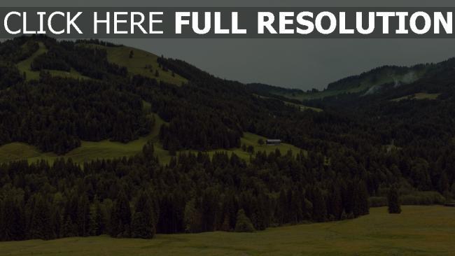 hd hintergrundbilder bäume hügel berge